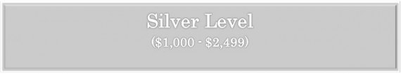 Silver level 3
